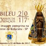 TV Aparecida transmite ao vivo a Missa de envio da imagem peregrina de Nossa Senhora Aparecida para a Arquidiocese de Botucatu nesta quarta (01) às 09h