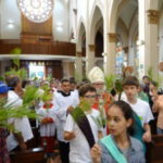 Domingo de Ramos: Missa e Procissão do Encontro reuniram fiéis