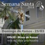Celebração do Domingo de Ramos iniciará a Semana Santa em nossa Catedral
