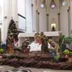 Catedral se prepara para celebrar o Natal de Jesus: Advento tempo da espera!