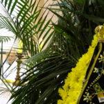 Visita da imagem de Nossa Senhora Aparecida marcou a abertura da Semana Santa na Catedral