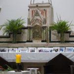 Nossa Catedral celebra o Domingo de Ramos